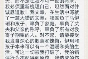 """""""文章体""""穿红网络"""