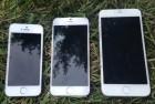 iPhone 6将于10月14日正式发售