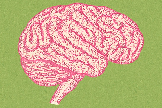 """当网络逐渐成为人类""""外脑"""" 对未来意味着什么"""
