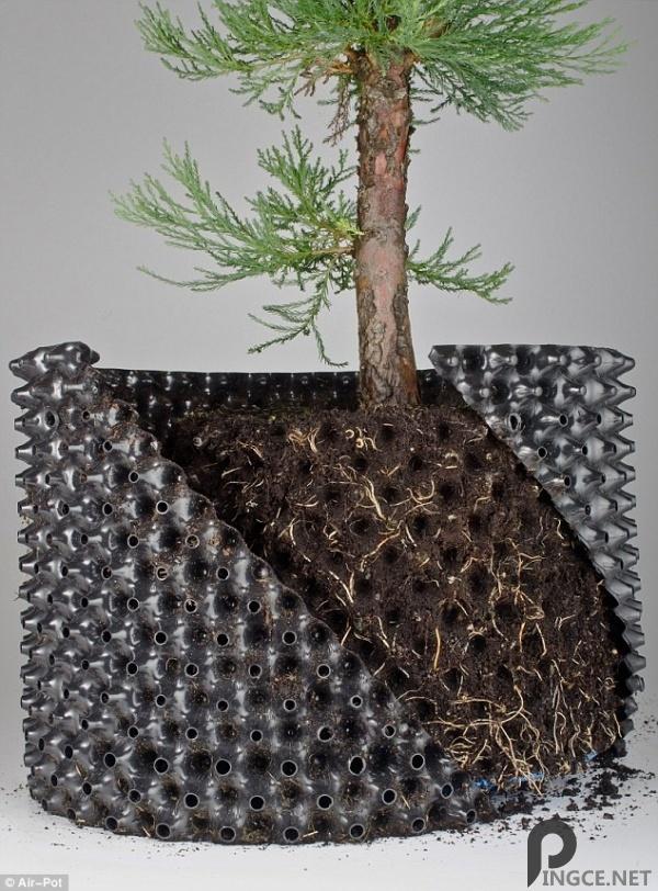 英国发明气孔盆栽盆 有效促进植物生长